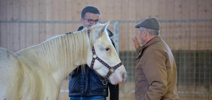 Horse Sense & Healing 2019