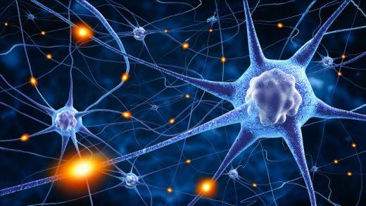 Trauma - Was im Gehirn passiert